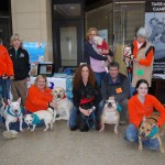 Dog Gone Walking Partners With Bryn Mawr Film Institute and Main Line Animal Rescue Every Saturday in January